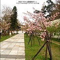 2011-0223-新竹公園-賞櫻花 (3).jpg