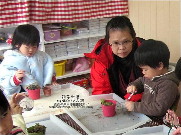 媽咪小太陽親子聚會-2011-0110-綠色-多肉植物 (14).jpg