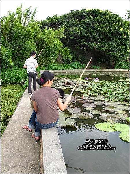 吳厝楊家莊-2010-0815 (36).jpg