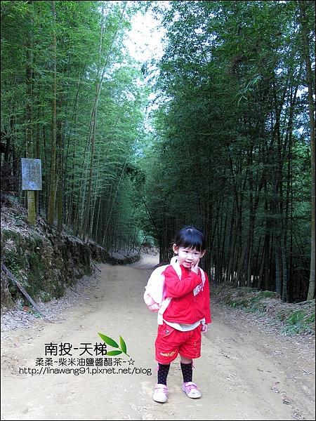2010-0608-南投-天梯 (5).jpg
