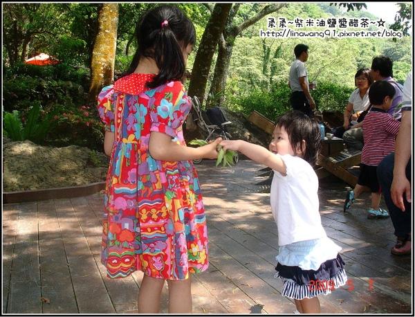 油桐花坊-yuki跟大姐姐玩.jpg
