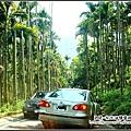 油桐花坊-非常窄的山路.jpg
