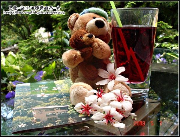 油桐花坊-熊與花與飲料.jpg