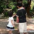 油桐花坊-yuki也跑去跟別人拿草.jpg