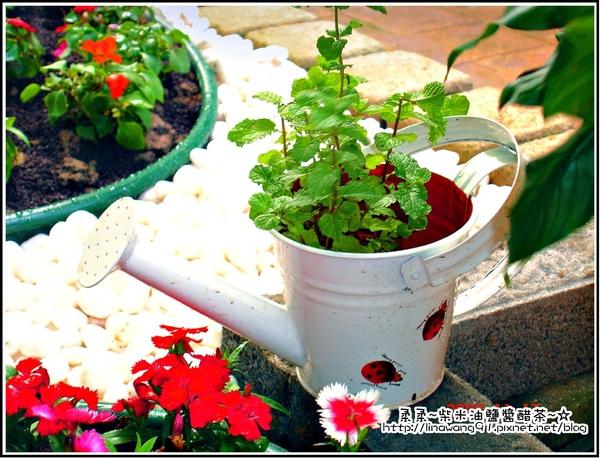 請人整修花園-澆水器也是可愛的花盆.jpg