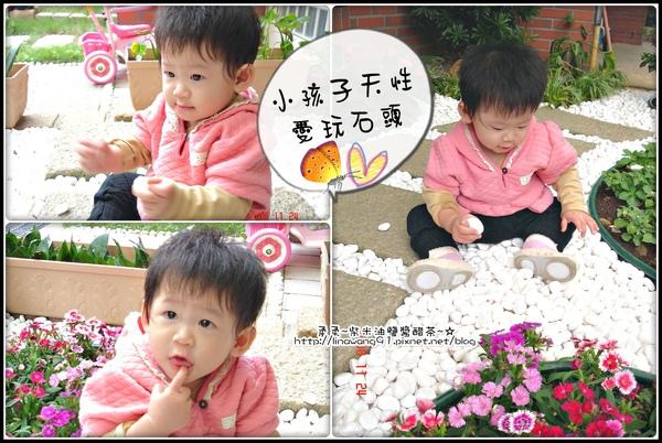 yuki-11個月愛玩花園石頭.jpg
