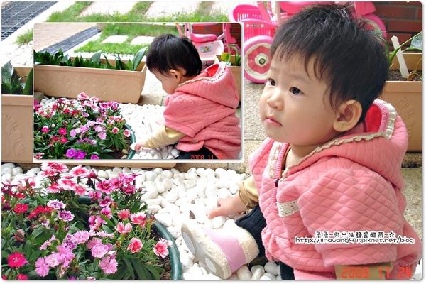 yuki-11個月玩花園石頭.jpg