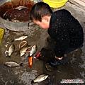 大陸-青島-魚都快玩死了.jpg