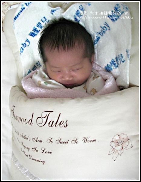 yuki出生第4天第一次在家睡.jpg