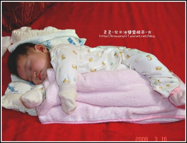 2個半月yuki的小豬側躺睡相.jpg