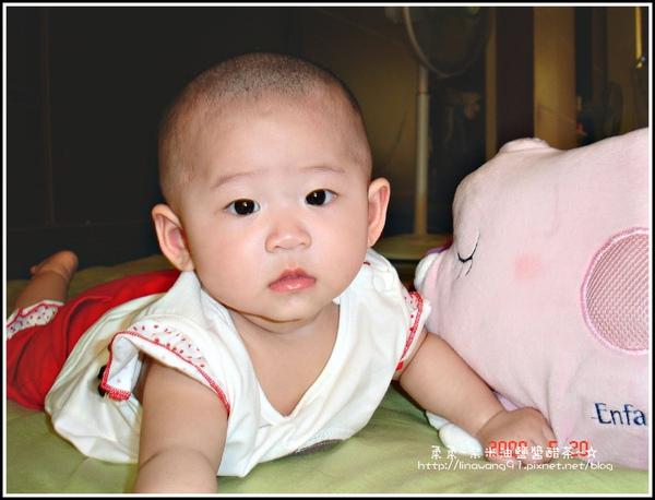 5個月與小豬枕頭拍照.jpg