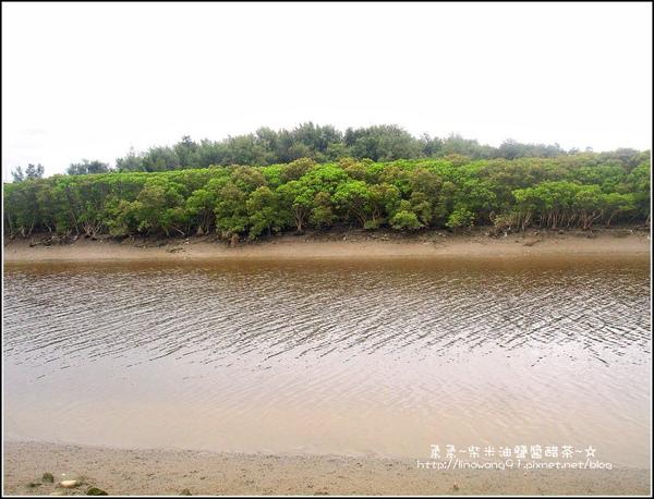 2009-0803新豐紅毛港紅樹林遊憩區 (1).jpg
