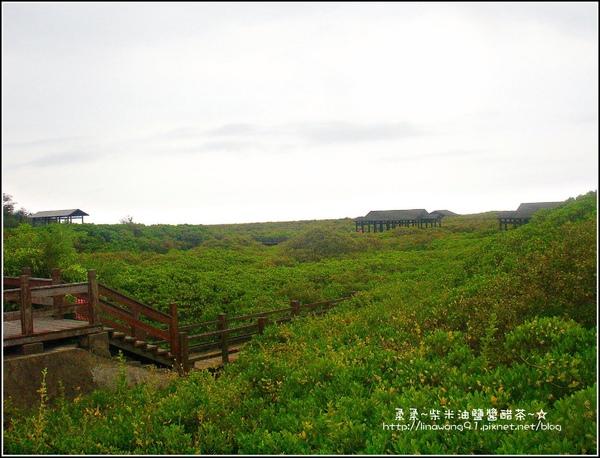 2009-0803新豐紅毛港紅樹林遊憩區 (5).jpg