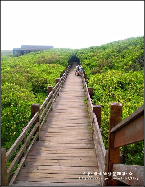 2009-0803新豐紅毛港紅樹林遊憩區 (6).jpg