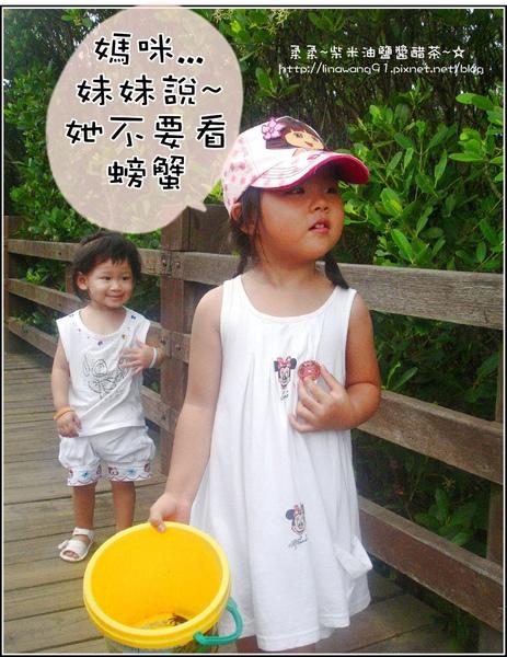 2009-0803新豐紅毛港紅樹林遊憩區-YUKI怕螃蟹.jpg