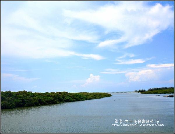 2009-0823-新豐紅毛港紅樹林遊憩區 (1).jpg