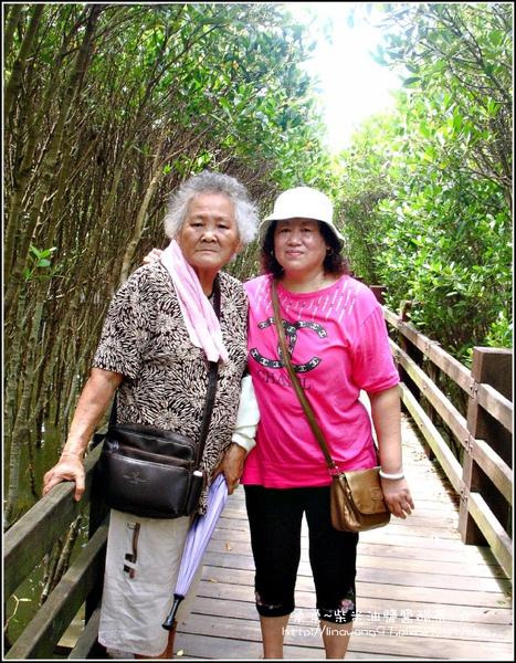 2009-0823-新豐紅毛港紅樹林遊憩區 (5).jpg