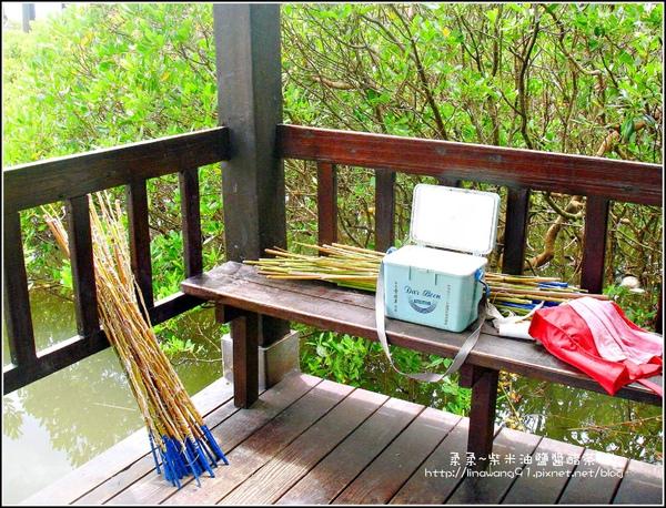 2009-0823-新豐紅毛港紅樹林遊憩區 (12).jpg
