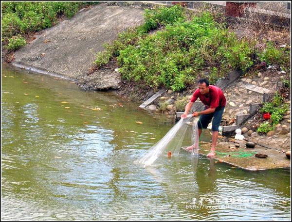 2009-0823-新豐紅毛港紅樹林遊憩區 (16).jpg