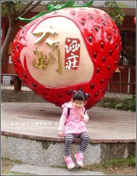 草莓文化館&大湖酒莊 (7).jpg