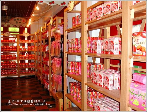 草莓文化館&大湖酒莊 (11).jpg