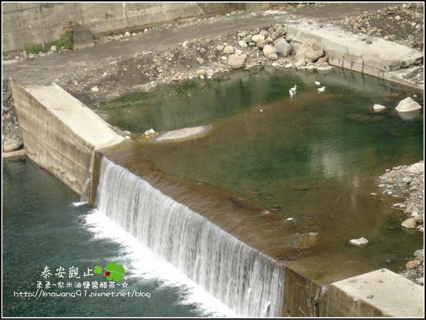 2009-1115-泰安觀止-L05房間 (18).jpg