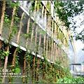 2009-1115-泰安觀止溫泉會館 (18).jpg