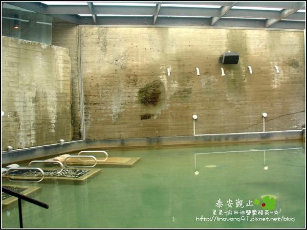 2009-1115-泰安觀止泡湯 (12).jpg