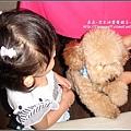 泰迪熊咖啡館 2009-0925 (12).jpg