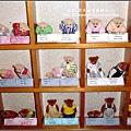 泰迪熊咖啡館 2009-0925 (25).jpg
