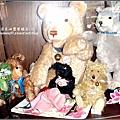 泰迪熊咖啡館 2009-0925 (26).jpg