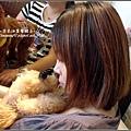 泰迪熊咖啡館 2009-0925 (29).jpg