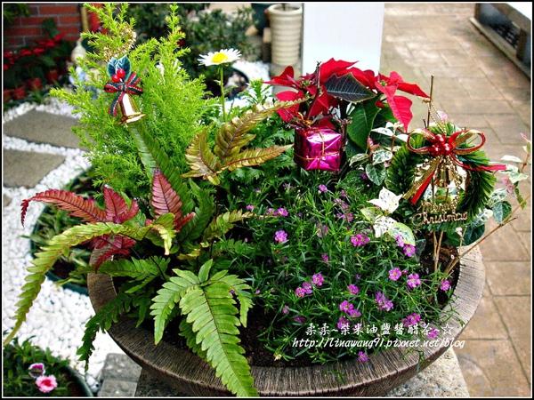 2009-1222-聖誕節盆景 (6).jpg