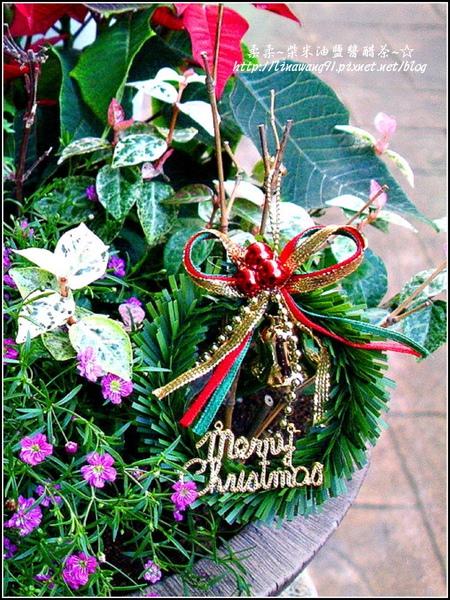2009-1222-聖誕節盆景 (9).jpg