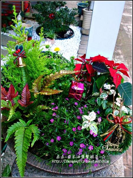 2009-1222-聖誕節盆景 (10).jpg