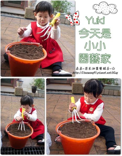 1歲11個月-Yuki小小園藝家.jpg