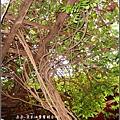 2009-1116-荷塘居 (23).jpg