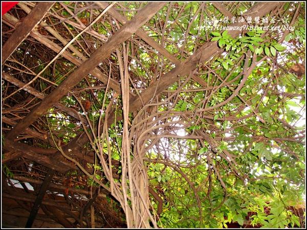 2009-1116-荷塘居 (24).jpg