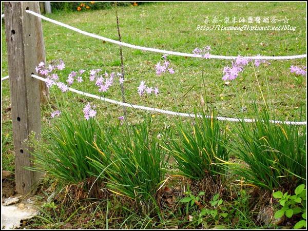 2009-1116-荷塘居 (76).jpg