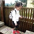 2010-1118  大湖-薑麻園-聖衡宮 (1).jpg