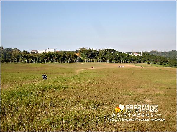 新竹-青青草原-2009-1108 (3).jpg