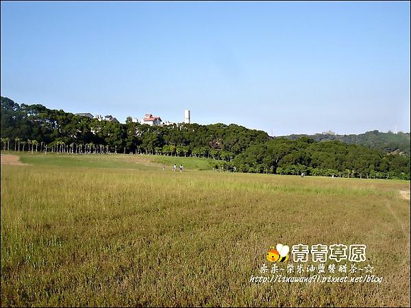 新竹-青青草原-2009-1108 (8).jpg