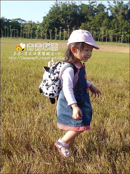 新竹-青青草原-2009-1108 (9).jpg