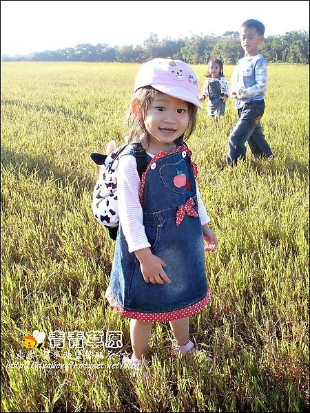 新竹-青青草原-2009-1108 (11).jpg