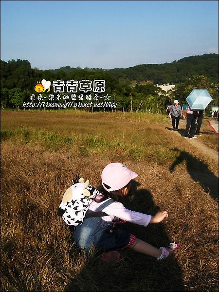 新竹-青青草原-2009-1108 (18).jpg