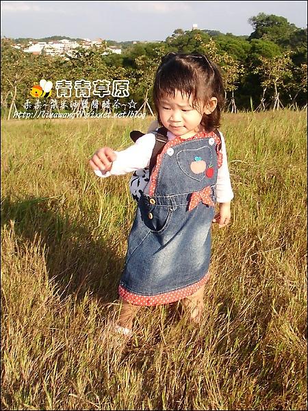 新竹-青青草原-2009-1108 (20).jpg