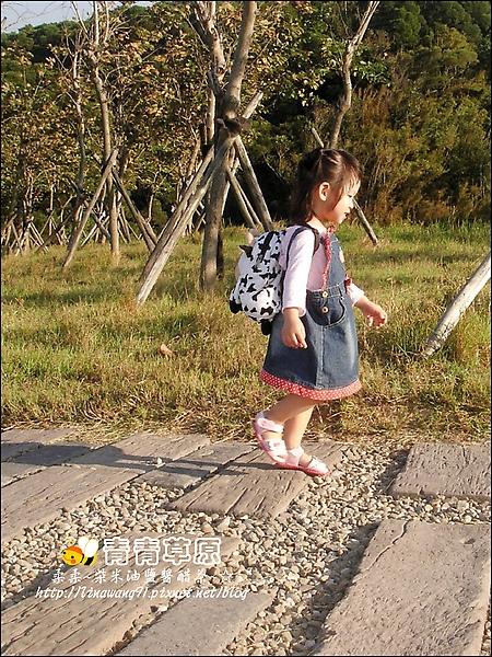 新竹-青青草原-2009-1108 (21).jpg