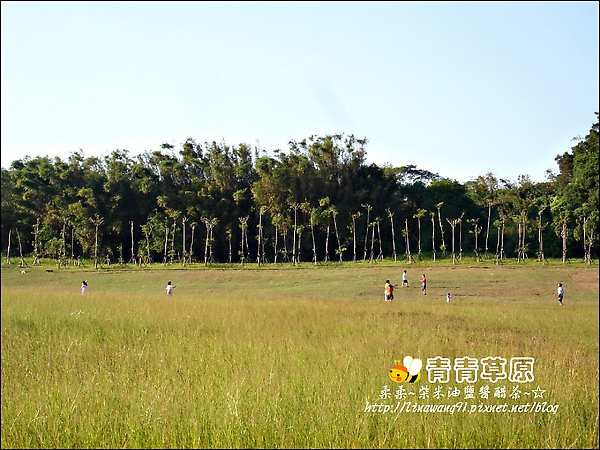 新竹-青青草原-2009-1108 (22).jpg