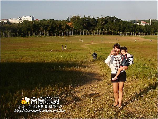 新竹-青青草原-2009-1108 (28).jpg