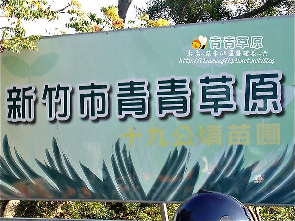 新竹-青青草原-2009-1108 (30).jpg